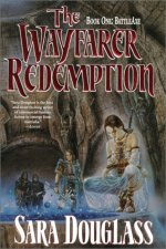 The Wayfarer Redemption