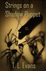 Strings on a Shadow Puppet